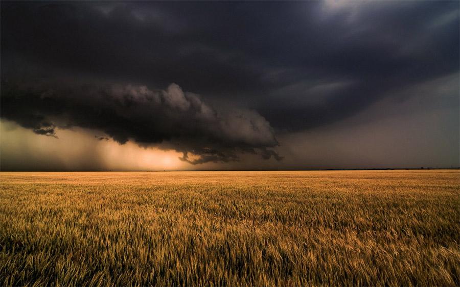 Проливные потери. Почему погодные колебания мы все еще рассматриваем как аномалии?