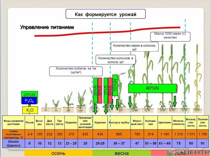 Метания Минсельхоза в поисках путей повышения урожайности
