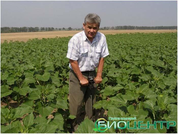 Башкирское чудо сберегающего земледелия